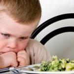 Cara Mengatasi Anak Susah Makan Usia 2 Tahun