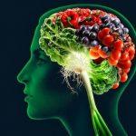 6 Jenis Makanan Yang Dapat Meningkatkan Daya Ingat